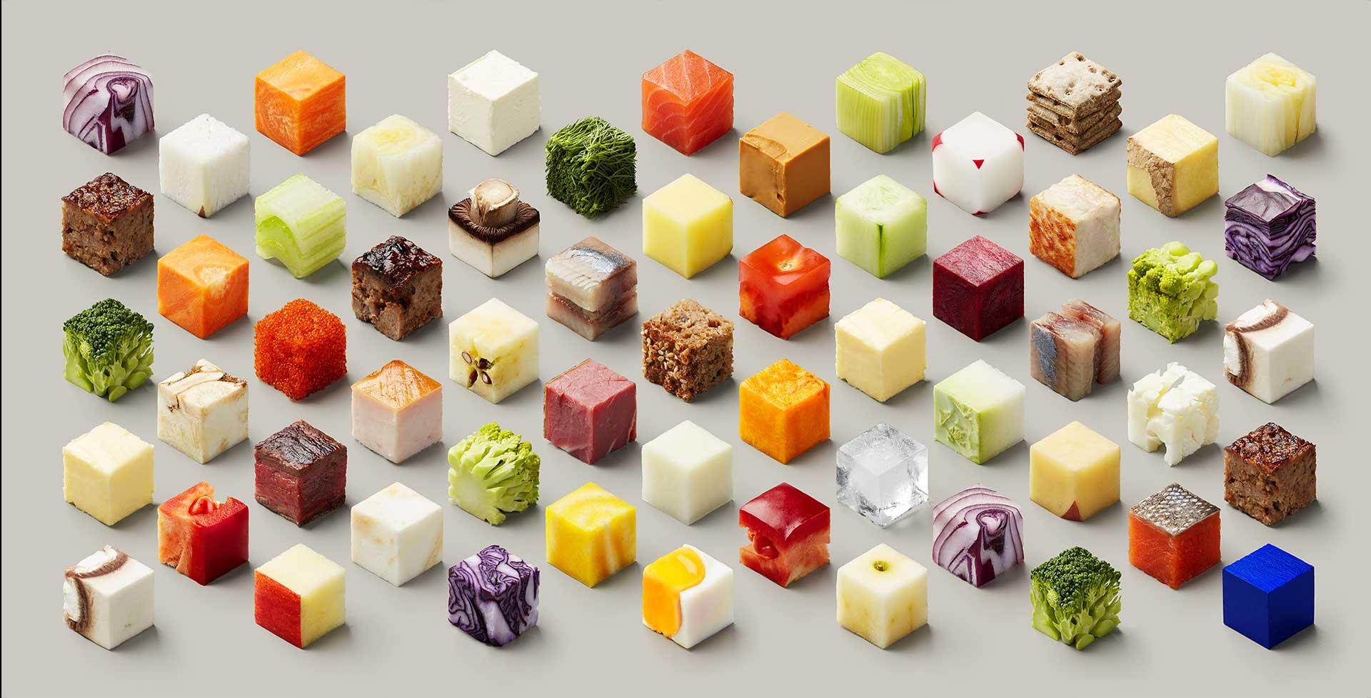 هندسهی غذایی