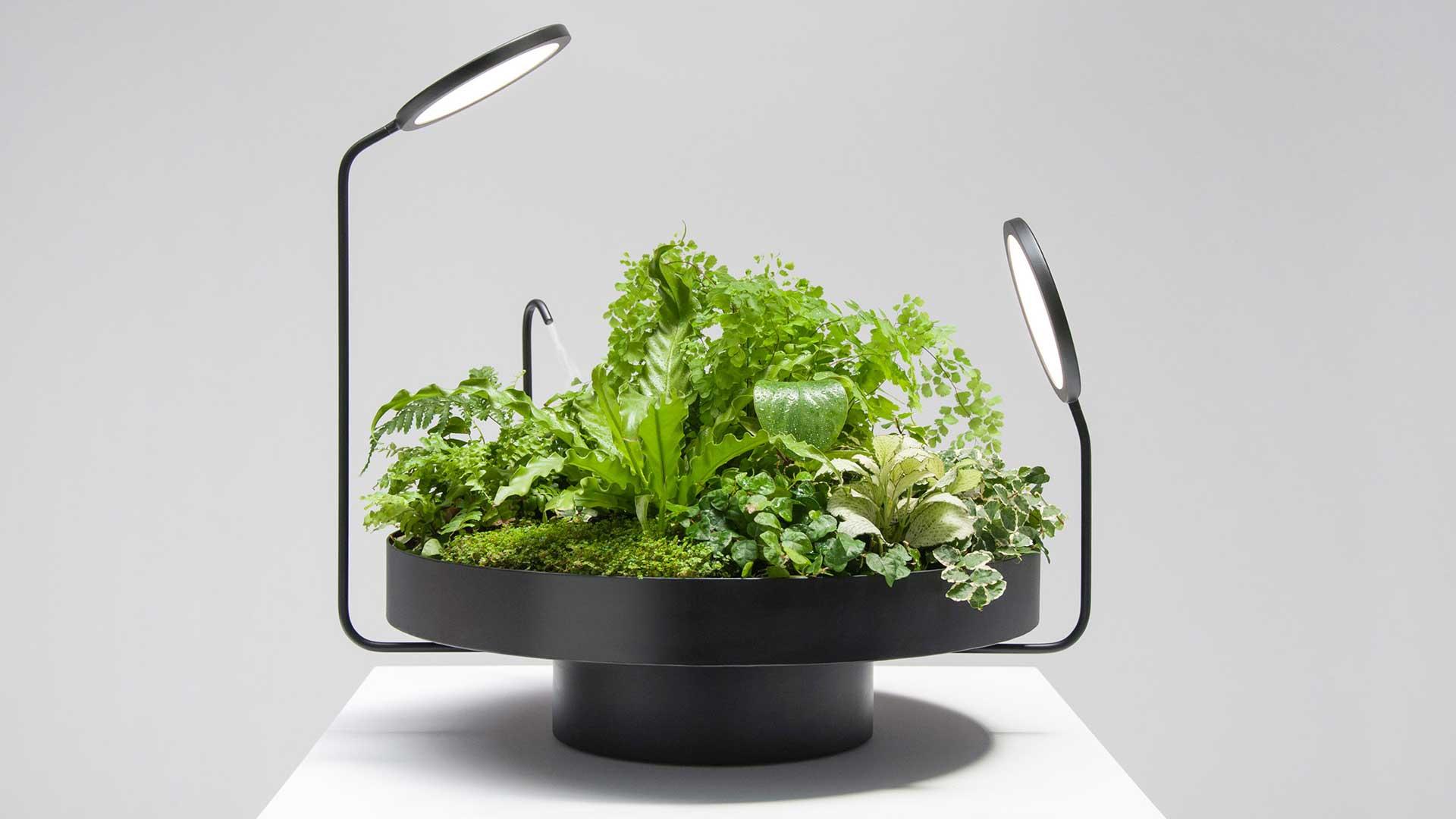 این مجموعه که با نام Viride (به معنای رنگ سبز در زبان لاتین) تولید شده از تلفیق نور و سبزینگی که همیشه در اطراف محیط زندگی ما بودهاند.